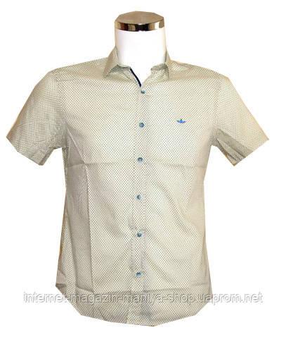 Рубашка мужская Disibel, приталенный крой Батал