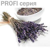 Лаванда (Южнобережная) эфирное масло Lavandula officinalis 5мл