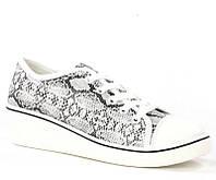 Яркие Женская спортивная обувь, кеды, конверсы, высокие, классические и низкие  со змеиным принтом на платформе!