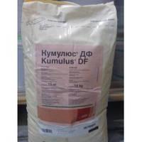 Фунгицид Сера коллоидная (Кумулюс) 1 кг BASF