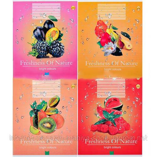 Тетрадь цветная 12 листов, линия