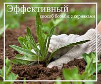 Эффективный способ борьбы с сорняками