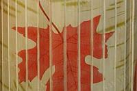 Обои из бамбука (светлые-осень) ширина планки ;17мм   высота  1,5м