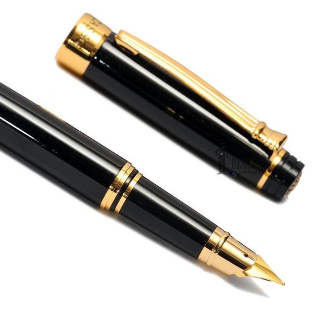 Перьевые ручки Picasso