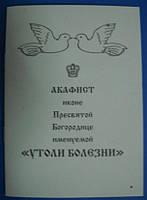 """Акафист иконе Пресвятой Богородице именуемой """"Утоли болезни"""""""