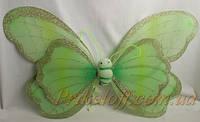 Крылышки Бабочки больные, салатовые