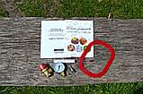 Автоклав из нержавеющей стали ЛЮКС-28, фото 6