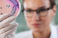 Определение общего количества мезофильных, анаэробных микроорганизмов в объектах среды жизнедеят-ти человека
