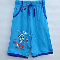 Бриджи для мальчика 1-4 года Captain синие