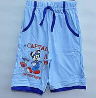 Бриджи для мальчика 1-4 года Captain голубые