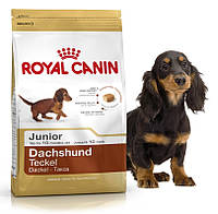 Корм для щенков породы такса Royal Canin Dachshund Junior 30