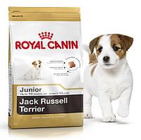 Royal Canin (Роял Канин) Jack Russell Terrier Junior Корм для щенков породы джек-рассел-терьер