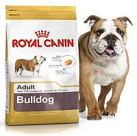 Корм для бульдогов старше 12 месяцев Royal Canin (Роял Канин) Bulldog Adult 24 Основное питание, Для взрослых животных, Собаки, Royal Canin, Франция, 3 кг, Сухие корма