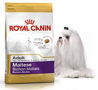 Корм для собак породы Мальтийская болонка старше 10 месяцев Royal Canin (Роял Канин) Maltese Adult 24