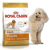 Корм для собак пуделей старше 10 месяцев Royal Canin (Роял Канин) Poodle Adult 30 1.5 кг