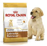 Корм для щенков лабрадоров ретриверов Royal Canin Labrador Retriever Junior  Основное питание, От 2-х месяцев, Супер-премиум, Франция, 3 кг, Сухие корма