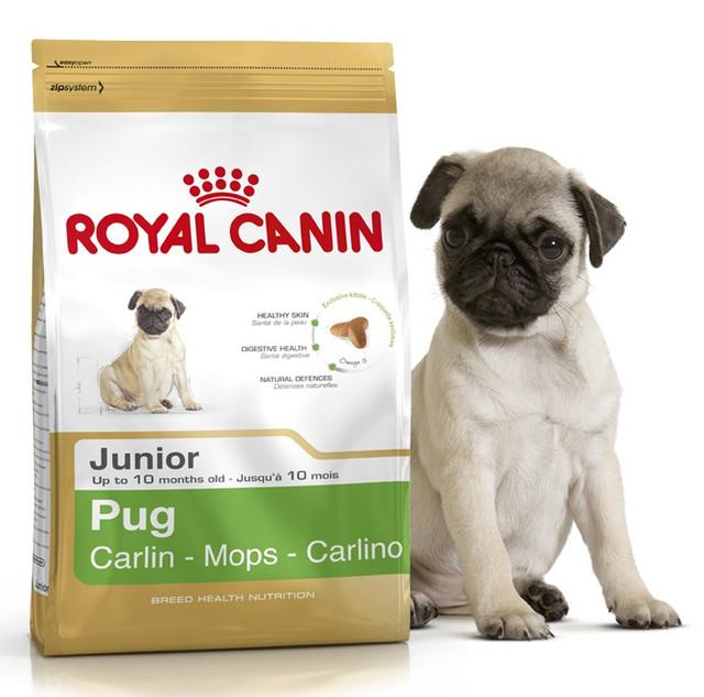 Корм для щенков мопса Royal Canin Pug Junior