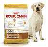 Корм для собак породы лабрадор ретривер Royal Canin Labrador Retriever Adult