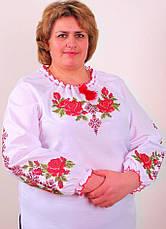 Женская вышиванка розы большой размер, фото 3