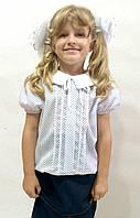 Блузка детская в школу К-19