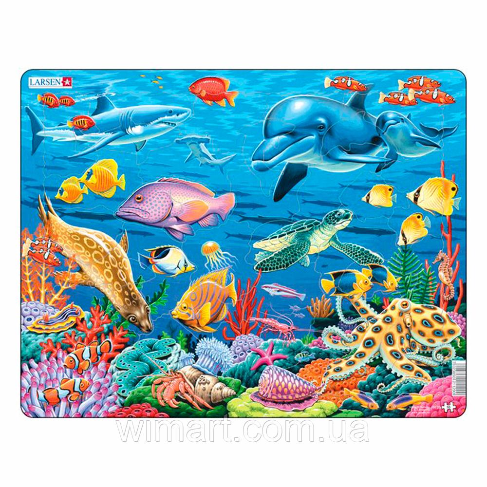Коралловый риф, серия МАКСИ