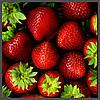 Ароматизатор TPA Strawberry