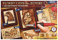 Набор Выжигание по дереву + художественное тонирование продам постоянно оптом и в розницу,Харьков
