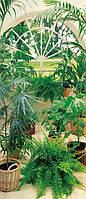 Фотообои на двери Зимний сад размер 200 х 86 см
