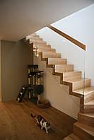 Проект Лестницы 1