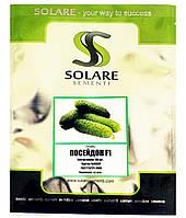 Семена огурца Посейдон 100 шт, фото 1