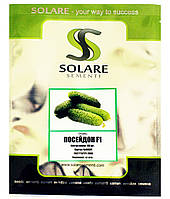 Семена огурца Посейдон 100 шт Solare Sementi