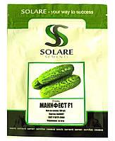 Семена огурца Манифест 100 шт Solare Sementi
