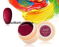 Гель-краска Canni 543 бордовая