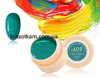 Гель-краска Canni 609 нефритовая