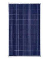 Солнечная панель 260 Вт поликристалл Trina TSM