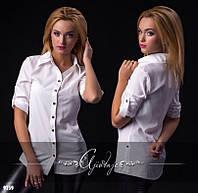 Модная женская блузочка