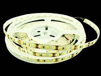 Cветодиодная лента 3528-120-IP33, 7500K