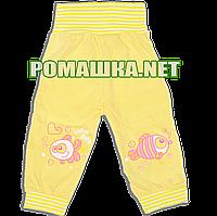 Штанишки на широкой резинке р. 62 для новорожденного ткань КУЛИР 100% тонкий хлопок ТМ Незабудка 2262 Желтый