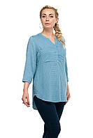 Женская блузка большого размера 1610017/3