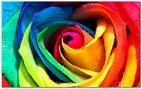 Кафель Панно роза, плитка 20х30см.