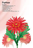 Квіти з бісеру. Кімнатні й садові, фото 5