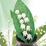 Квіти з бісеру. Кімнатні й садові, фото 8