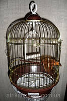 Круглая клетка для маленьких птиц. Цвет золото  23х35см