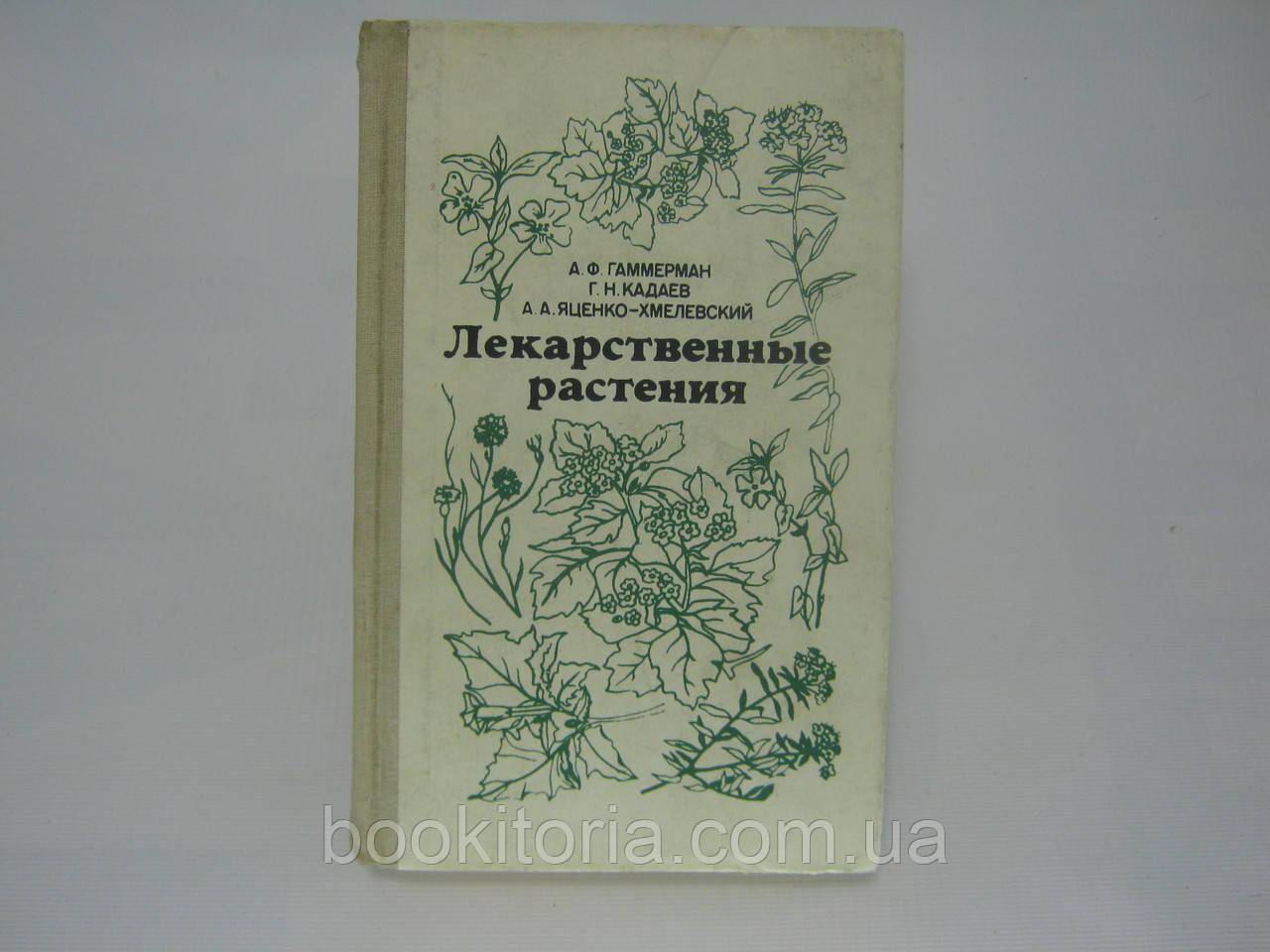 Гаммерман А.Ф. и др. Лекарственные растения (Растения-целители) (б/у).