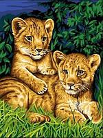 Картины по номерам 30×40 см.  Забавные львята