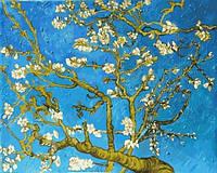 Картины по номерам 40×50 см. Цветущие ветки миндаля
