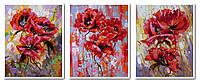 Картины по номерам 50х120 см. Триптих Маковый цвет
