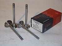 Клапан впускний (комплект) для Форд 1.8 Duratorq