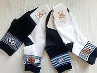 Демисезонные носки для мальчиков (арт.2340) ТМ Bonus