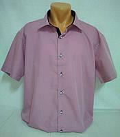 Рубашка мужская короткий рукав p. 3XL, 4XL